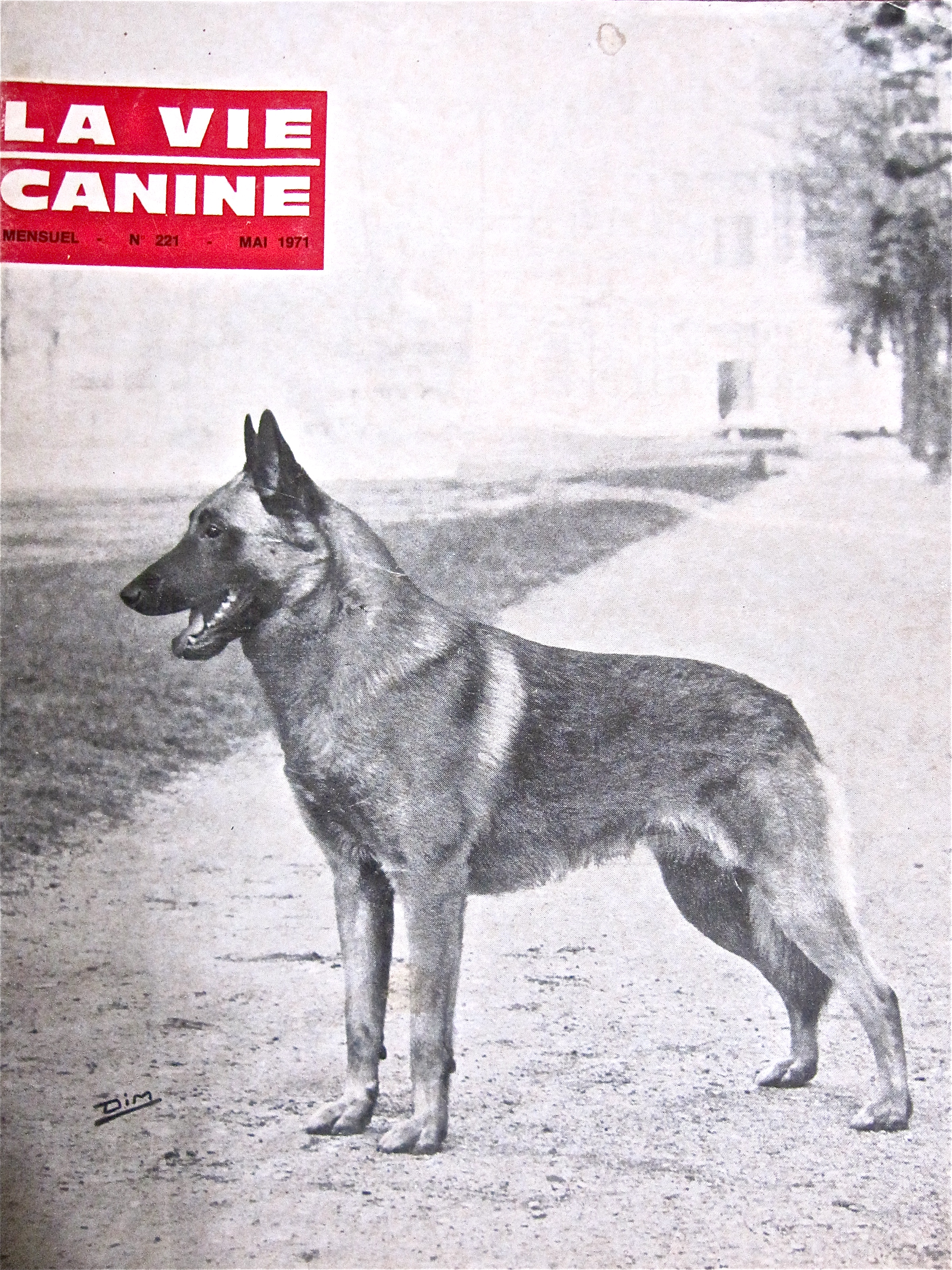 note to the american public belgian malinois look don u0027t touch