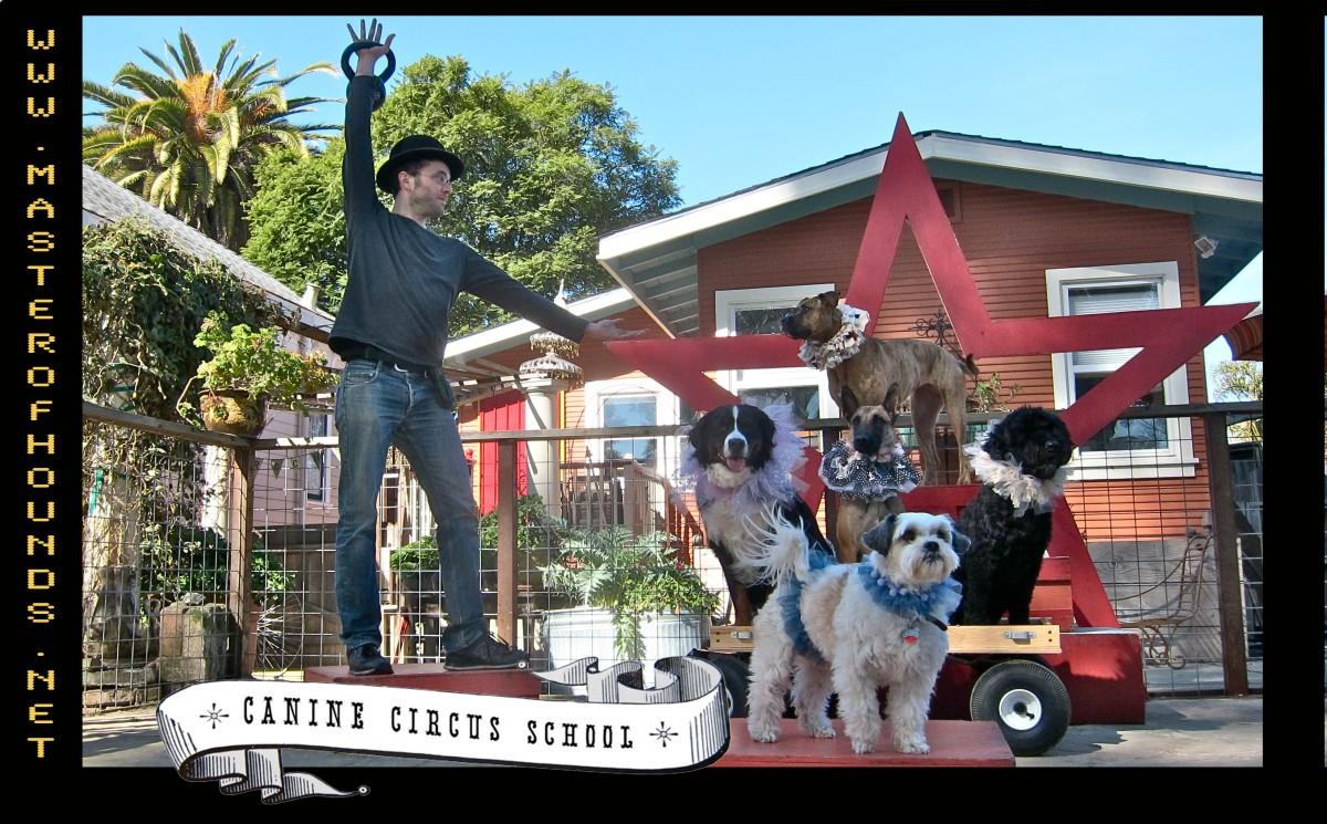 Chris circus 2