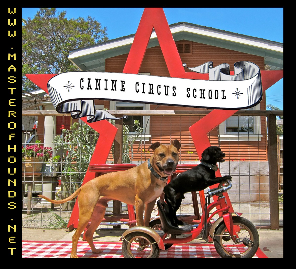 circus school on bike