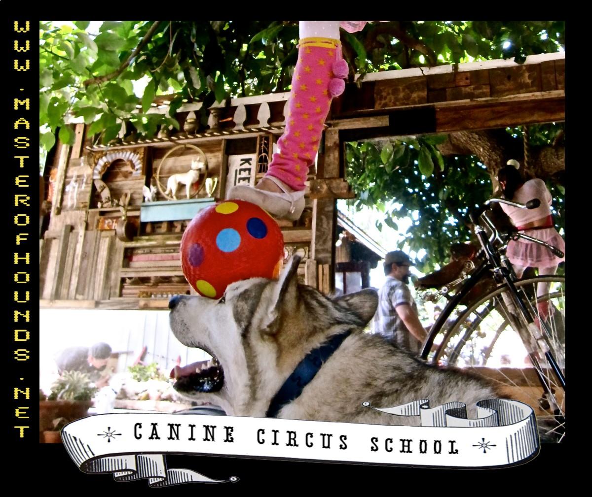 logan circus school ball balance