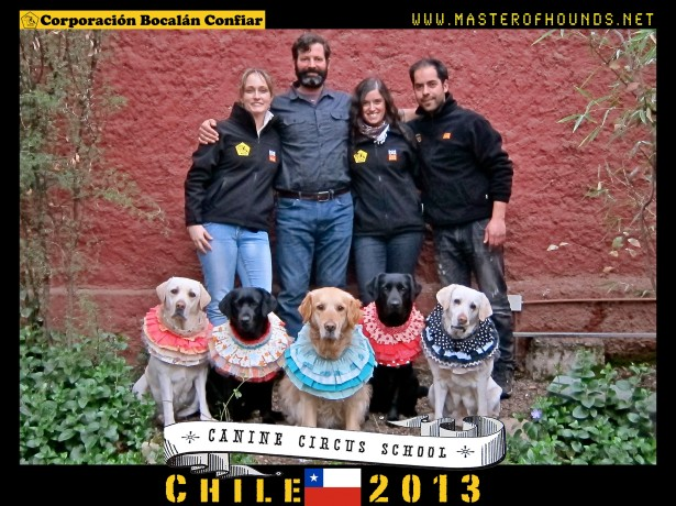 canine circus school chile courthouse