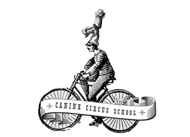 circus class design