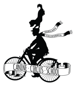 canine-circus-school-final